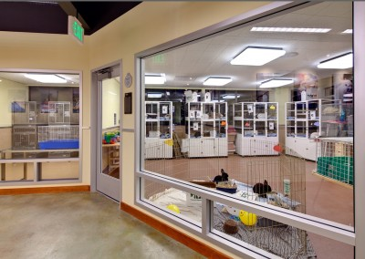 The 2nd floor houses small and exotic animals plus the Wildlife Care Center