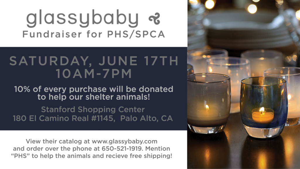 Glassybaby Fundraiser for PHS/SPCA @ Glassybaby Palo Alto