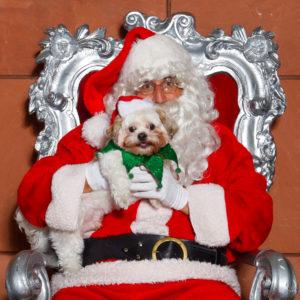 "Santa ""Paws"" Photos @ Peninsula Humane Society & SPCA | Burlingame | California | United States"