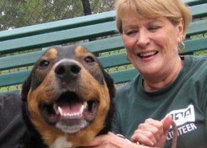 Volunteer Orientation @ Peninsula Humane Society & SPCA