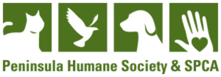 Home - Peninsula Humane Society & SPCA